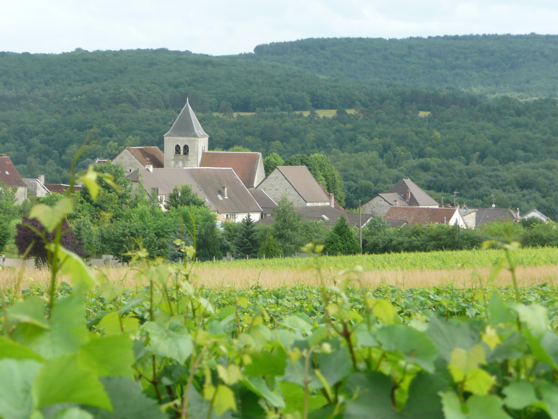 Le village entre vignes et forêts